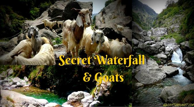 Galu (or Gallu) – of chai shops, secret waterfall and goats