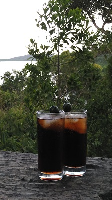 Drinking in the Philippines - Tanduay Rum with coke and Calamansi