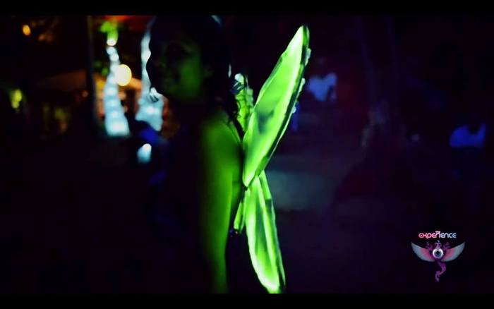 My LED Fairy Wings at the Experience PsyTrance Festival