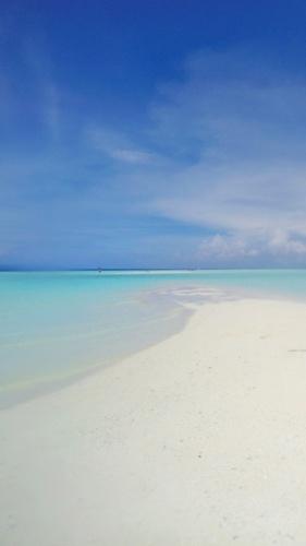 Pasir timbul beach, Raja Ampat, Indonesia - the most beautiful beach I've ever seen
