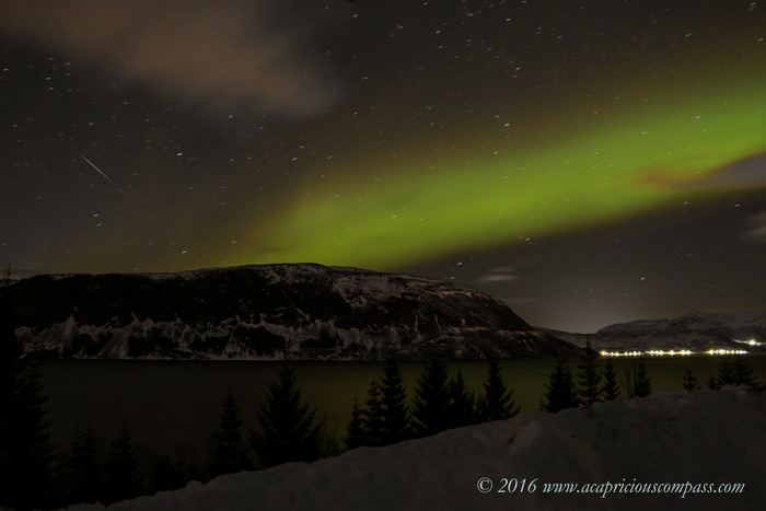 Enjoy the Peace and Try to spot Northern Lights at Norway