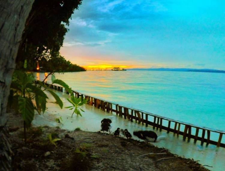 My Private Beach at Raja Ampat Dive Lodge - Raja Ampat Travel Guide