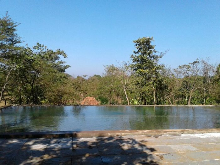 Organic Natural Pool at Dudhsagar Plantation Goa