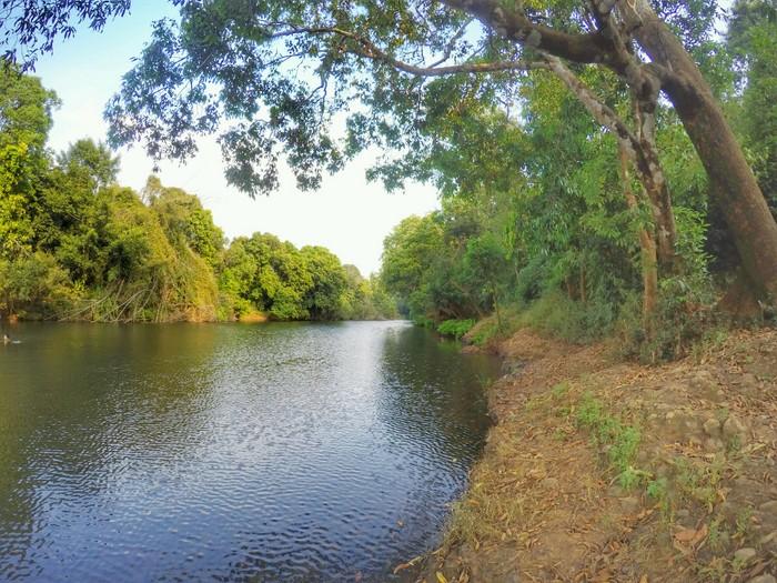 Little river behind Dudhsagar Plantation, Goa