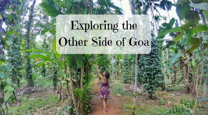 Exploring the other side of Goa at Dudhsagar Plantation
